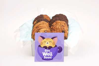 Adorable Cat Purple Get Well Gift Box