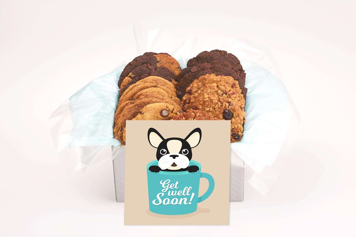Bulldog Get Well Cookie Gift Box