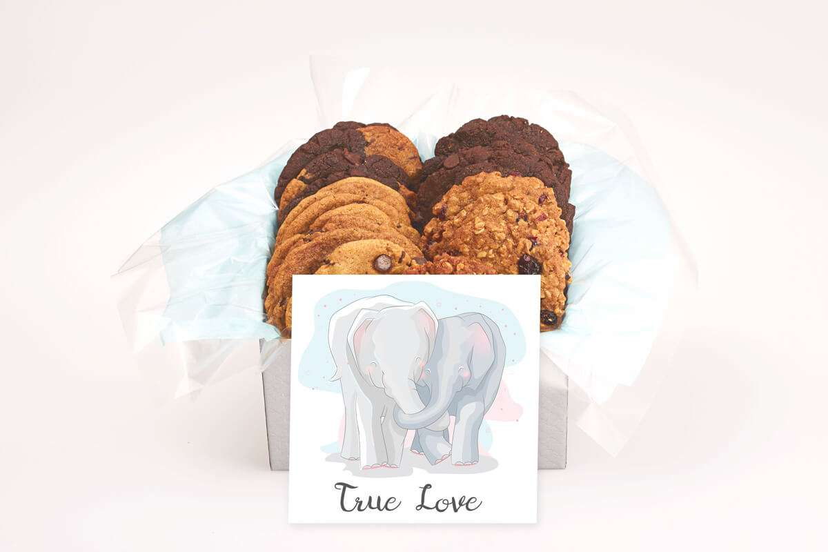 Elephant True Love Cookie Gift Box