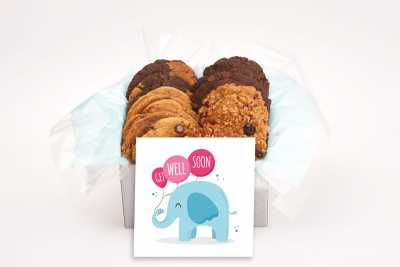 Get Well Elephant with Balloons Gift Box