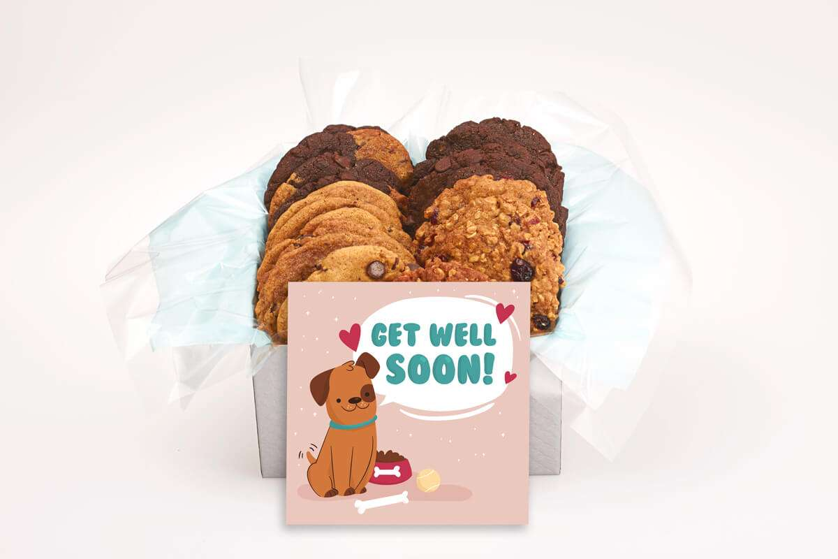 Get Well Soon Dog With Bone Gift Box