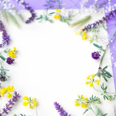 Select the Purple and Yellow Flower Frame